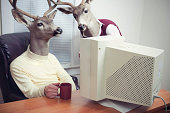 Deer Head Men Working At Office
