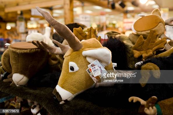 Toys From Cabela S : Cabela s store stock photos and pictures getty images