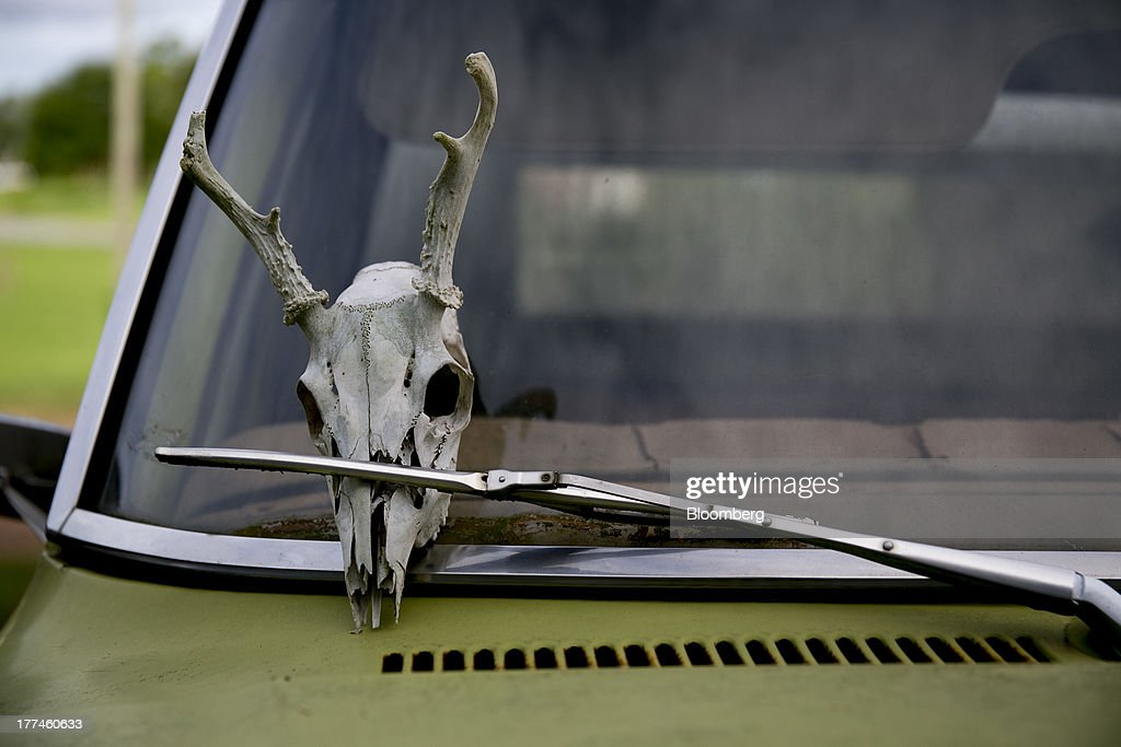 A deer skull is held in place by a windshield wiper on a Ford Motor Co. pickup truck at Bullington Farms in Shoals, North Carolina, U.S., on Monday, Aug. 19, 2013. President Barack Obama's proposal in April to raise federal excise taxes on cigarettes by about 93%, to $1.95 a pack, is not likely to gain political support, due in part to weak consumer spending amid sluggish wage growth in recent years. Photographer: Andrew Harrer/Bloomberg via Getty Images