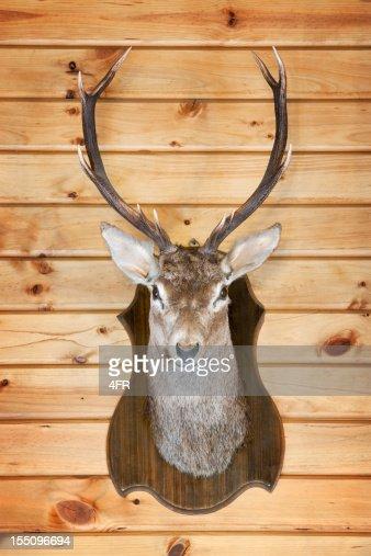 Deer Trophy (XXXL)