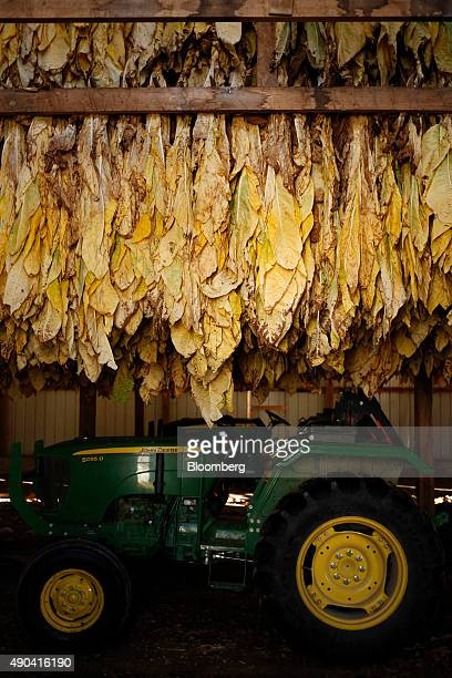 A Deere Co John Deere 5055D utility tractor sits parked in a tobacco barn as migrant workers hang Burley tobacco grown by Langley Farms in Finchville...