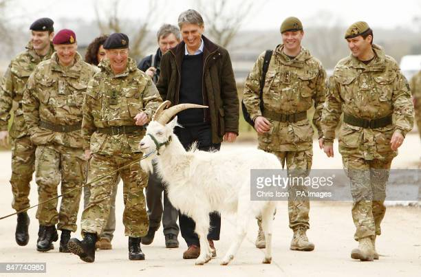 Defence Secretary Philip Hammond and Chief of the Defence Staff General Sir David Richards are confronted by a goat during a visit to Copehill Down a...