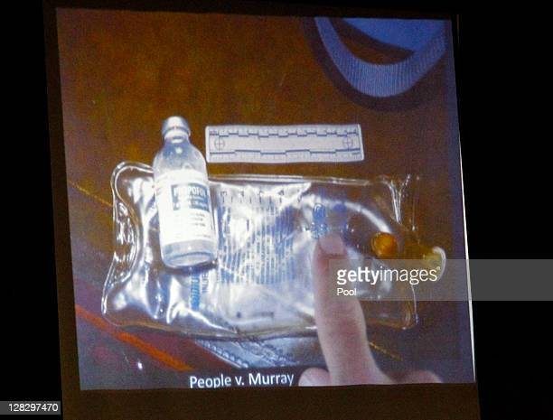 Defense attorney Ed Chernoff points to a saline bag and bottle of propofol found in Michael Jackson's home in this evidence photo projected on a...