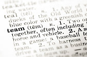Definition of word team in dictionary