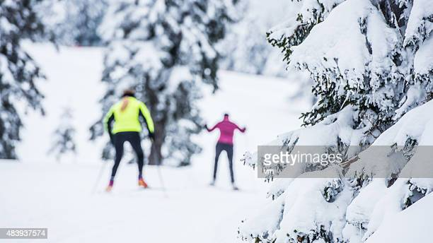 Defocused Shot of Two Women Back Country Nordic Skiing
