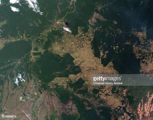 Deforestation of the Amazon rainforest at Rondonia Brazil In this image intact forest is deep green while cleared areas are tan or light green The...