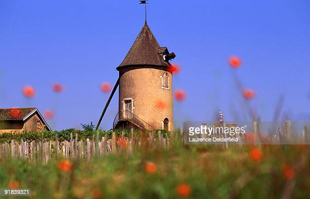 Defunct windmill, Beaujolais, France