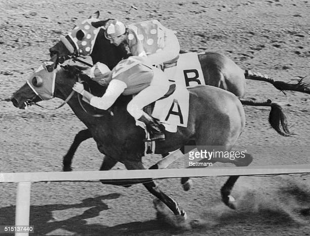Del Mar California Racing Seabiscuit won by a nose over Ligaroti in their $25000 winnertakeall match race here August 12th Georgie Woolf was riding...