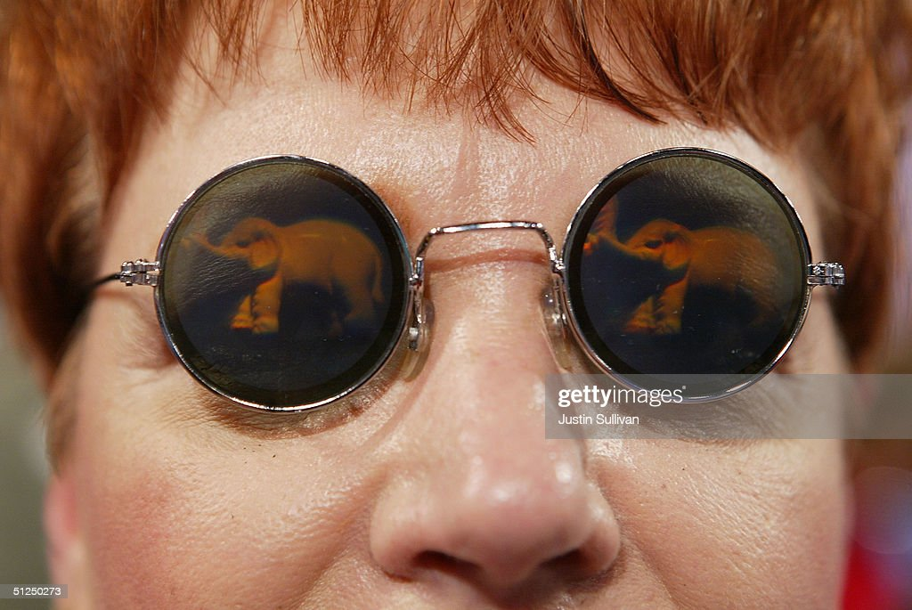 A delegate wears glasses featuring an elephant the symbol of the Republican party on the convention floor during the opening of night two of the...