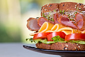 Deli meat sandwich with ham and cheese