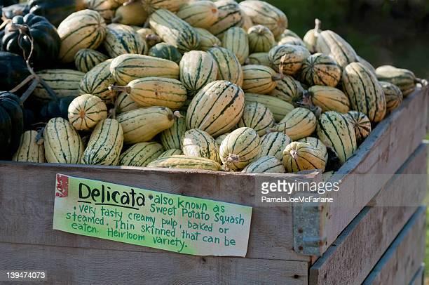 Delicata Squash à un marché à la ferme