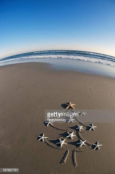 Étoile de délicates naturelle arbre de Noël dans le sable