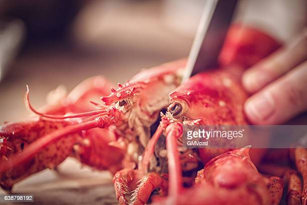 Delicious Fresh Cooked Lobster