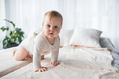 Full length portrait of cute infant crawling on the bed. She is looking at camera. Copy space in right side