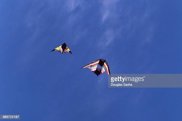 Delta type kites