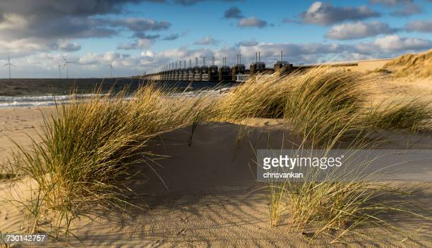 Delta Works and Sand dunes on the beach, Kamperland, Zeeland, Holland