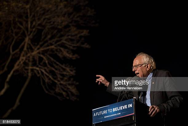 Democratic Presidential Candidate Senator Bernie Sanders speaks at a rally at St Mary's Park in the Bronx borough March 31 2016 in New York City...