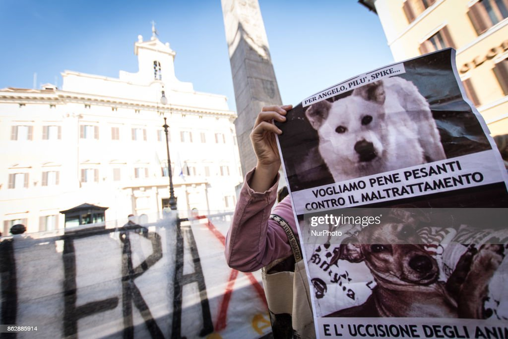 European Animalist Party Protest In Rome against the mistreatment of animals