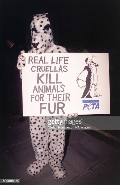 A demonstrator from the People for the Ethical Treatment of Animals alerts cinemagoers to reallife Cruella De Vils outside the Royal Albert Hall...