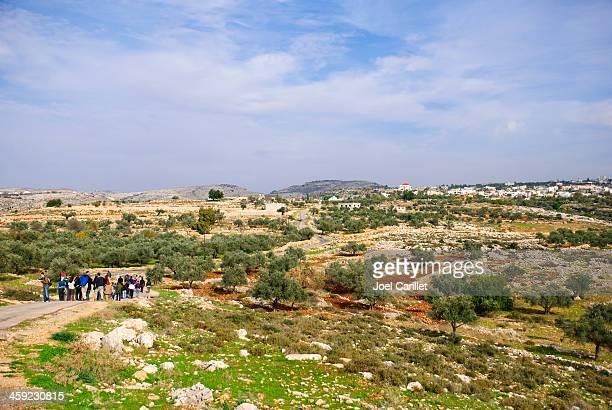 Demonstrators in the West Bank (Bil'in, Palestine)