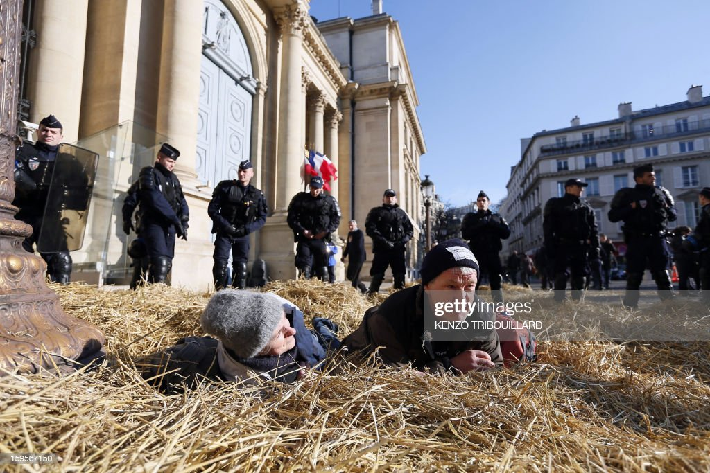 Demonstrators lay on the straw they spread before being evacuated by anti-riot police during a protest of the French farmers union 'Confederation Paysanne' in front of the French National Assembly, on January 16, 2013 in Paris, against breeding conditions in France. They denounced the increasing prices of basic products for the cattle.