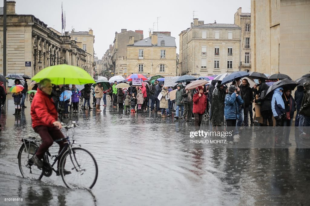 Demonstrators march under rain on February 14, 2016 in Bordeaux, southwestern France, during a demonstration against pesticides and GMOs (genetically modified organisms). / AFP / Thibaud MORITZ