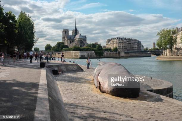 an association made a giant whales in front of the Notre Dame Cathedral in Paris on 21 July 2017