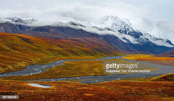 Denali Alaska in fall season
