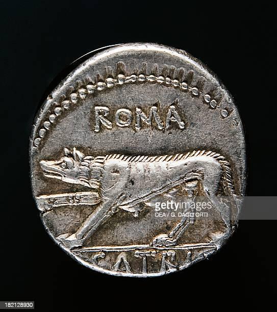 Denarius with the Capitoline Wolf Roman coins Parigi Jean Vinchon Numismatique