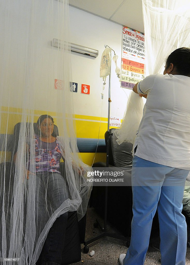 Dengue fever patients are admitted into hospital in Asuncion, on January 16, 2013. According to Paraguay's Ministry of Health there are about 500 possible cases of dengue per day in the area of Asuncion. AFP PHOTO/Norberto Duarte