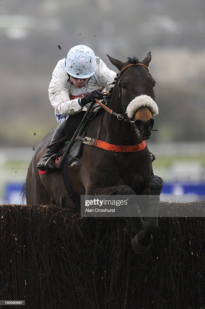 Denis O'Regan riding Cape Tribulation clear the last to win The Argento Steeple Chase from Imperial Commander (L) at Cheltenham racecourse on January 26, 2013 in Cheltenham, England.