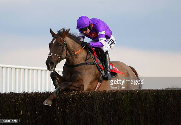 Denman ridden by Ruby Walsh jumps a frence on his way to coming second in the Levy Board Steeple Chase during the race meeting at Kempton Racecourse...
