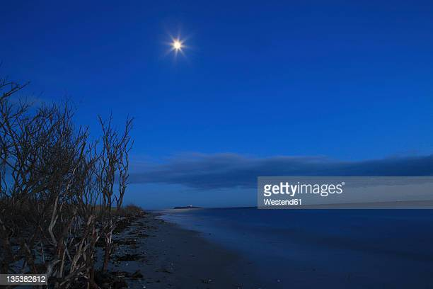 Denmark, Kattegat, Ebeltoft, Baltic Sea, View of beach near sea with moon at night