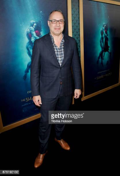 Dennis Berardi attends the premiere of 'The Shape Of Water' at Academy Of Motion Picture Arts And Sciences on November 15 2017 in Los Angeles...
