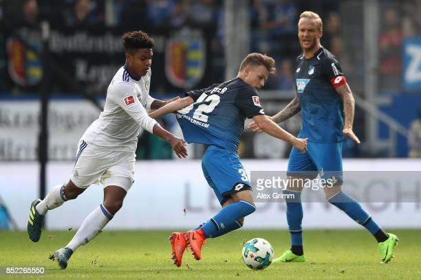 Dennis Geiger of Hoffenheim fights for the ball with Weston McKennie of Schalke during the Bundesliga match between TSG 1899 Hoffenheim and FC...
