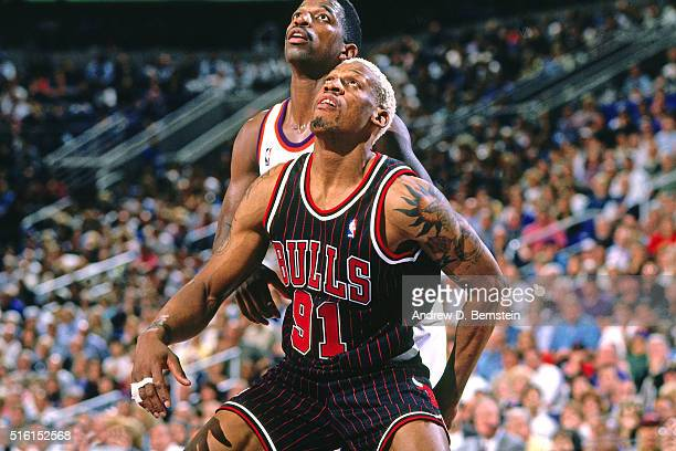 Dennis Rodman of the Chicago Bulls boxes out against the Phoenix Suns on February 6 1996 at the America West Arena in Phoenix Arizona NOTE TO USER...