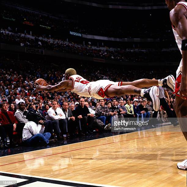 Dennis Rodman of the Chicago Bulls goes fully horizontal as he dives for a loose ball in 1997 during game at the United Center in Chicago ILinois...