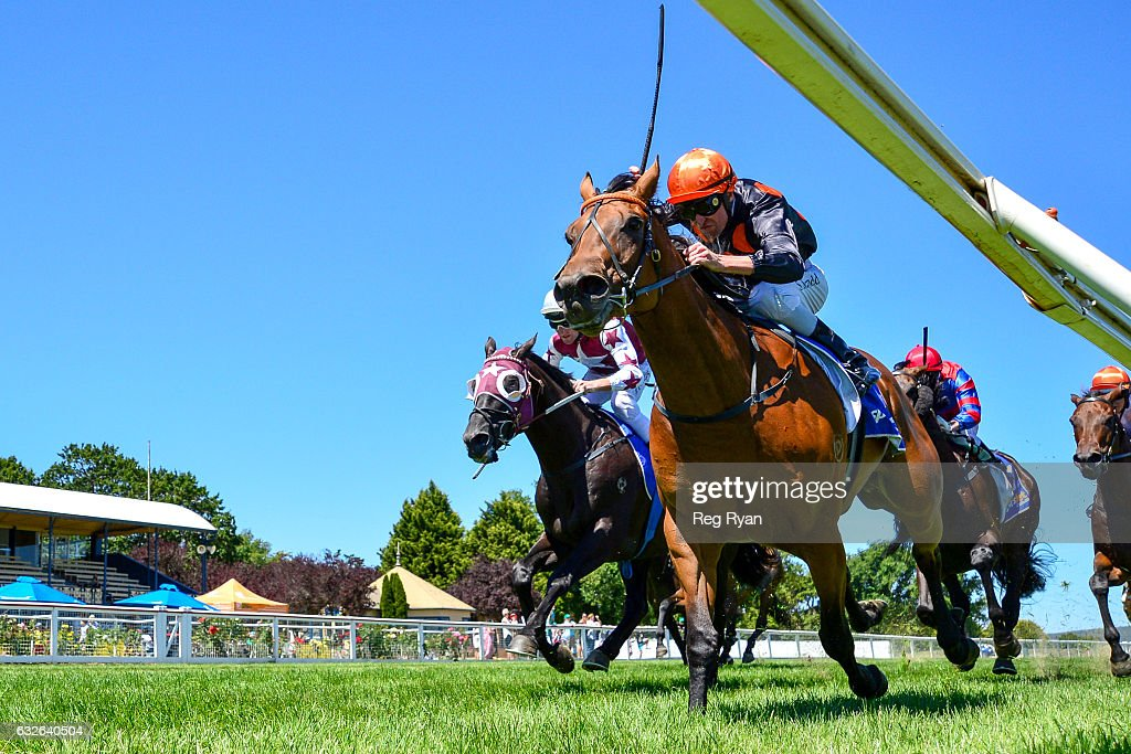 Denpasar ridden by Steven Arnold wins Porter Plant BM64 Handicap at Sportsbet-Ballarat Racecourse on January 25, 2017 in Ballarat, Australia.