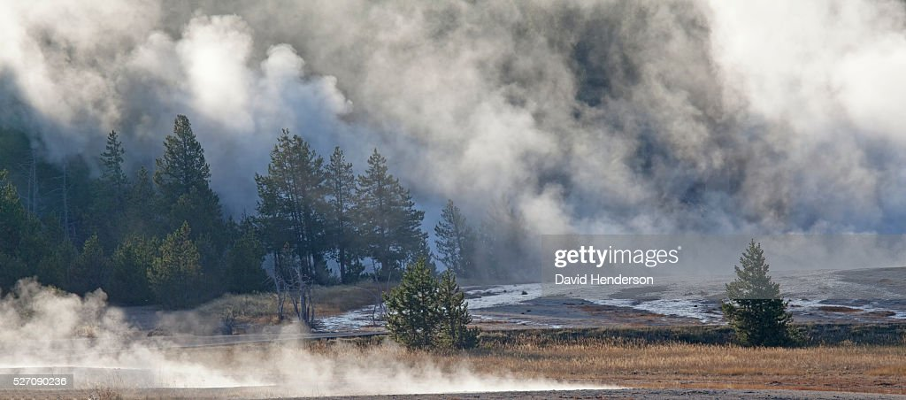 Dense early-morning thermal steam, Wyoming, USA : Stock Photo