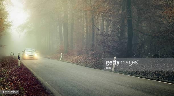 Brouillard épais sur la Route de campagne, oncoming feu
