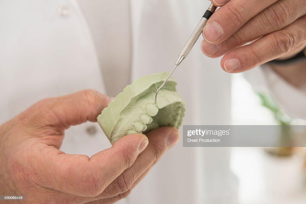 Dentist hand showing a model of teeth with dental equipment, Munich, Bavaria, Germany