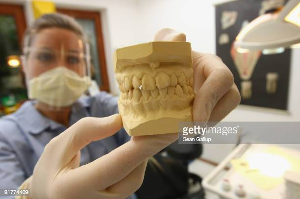 A dentist holds up the plaster cast of a patient's set of teeth at a dentist's office on October 12 2009 in Berlin Germany German political parties...