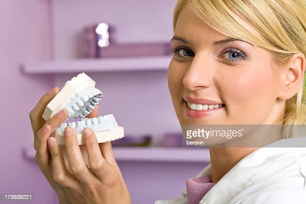 Dentista com dentes modelo de reprodução