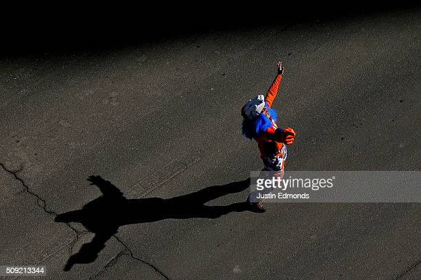 Denver Broncos fan celebrates in the streets during a victory parade to celebrate their Super Bowl championship on February 9 2016 in Denver Colorado...