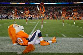 Denver Broncos mascot Miles watches as the Denver Broncos cheerleaders perform during a game between the Denver Broncos and the San Diego Chargers at...