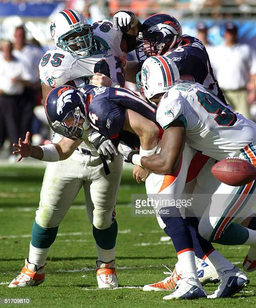 Brian Griese Dolphins