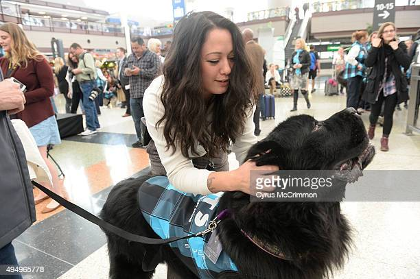 Denver International Airport introduced the dogs in it's new Canine Airport Therapy Squad program in the Jeppesen Terminal on Thursday October 29...