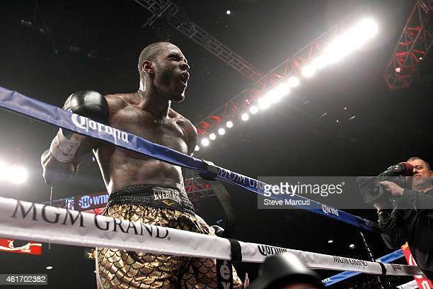 Deontay Wilder celebrates after defeating WBC heavyweight champion Bermane Stiverne at the MGM Grand Garden Arena on January 17 2015 in Las Vegas...