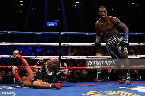 Deontay Wilder knocks out Artur Szpilka in the 9th round during their WBC Heavyweight Championship bout at Barclays Center on January 16 2016 in...