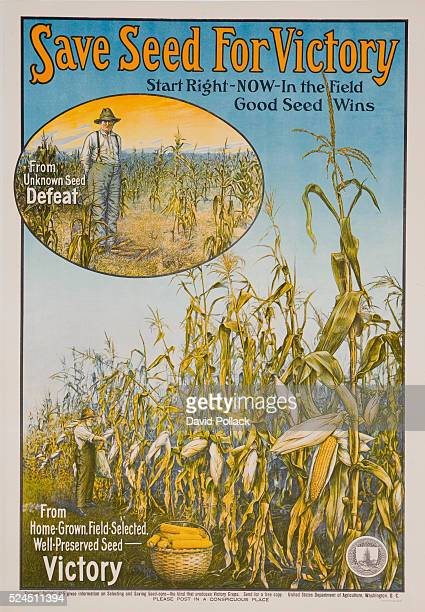 US Department of Agriculture poster Save Seed for Victory From unknown seed defeat From homegrown fieldselected wellpreserved seed victory